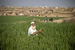 Imam Khomeini Distributed his Land Among Farmers