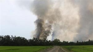 Fresh fires reported in empty Rohingya Muslim village