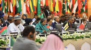 Muslim nations seek global pressure on Myanmar over Rohingya crisis