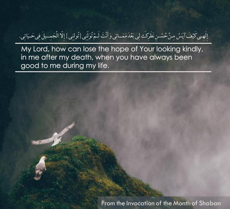 Supplications of the month of Sha'bān are the greatest sources of Divine teachings