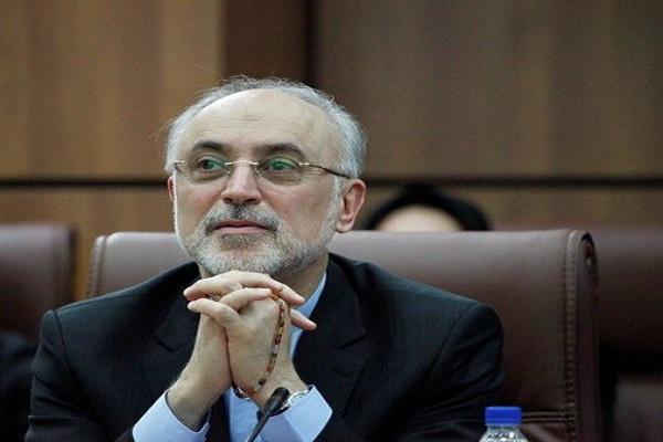 Salehi : le site de Fordo est l'un des sites les plus actifs en Iran