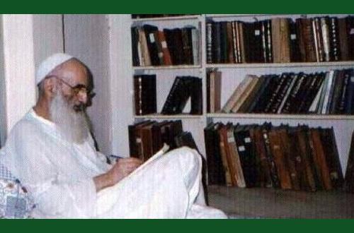 آیت الله سیستانی، مرجعیت کے وقار کا حافظ