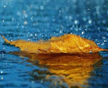 بارش کا پانی پہونچ جائے تو کیا حکم ہے؟