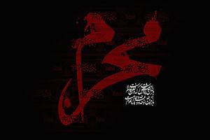 محرم الحرام میں احتیاطی تدابیر کے ساتھ سید الشہدا(ع) کی عزاداری منائی جائے گی