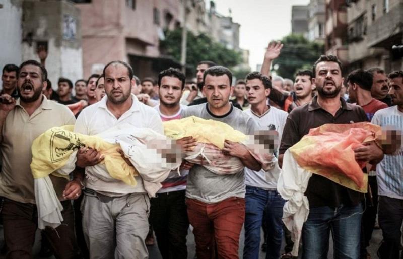 فلسطین کی حمایت